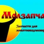 ООО «Молзапчасть»